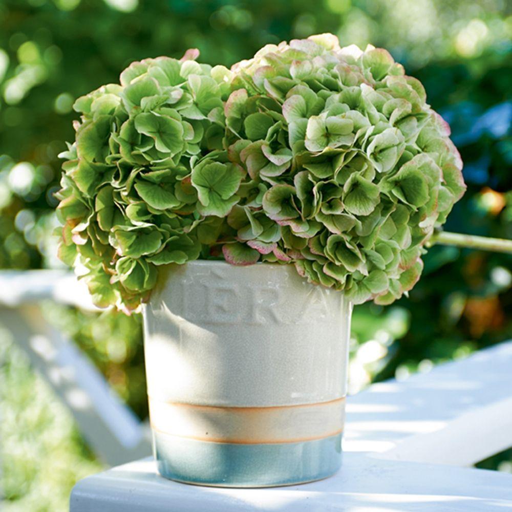 Květináč RM Classic Crackle Pot white