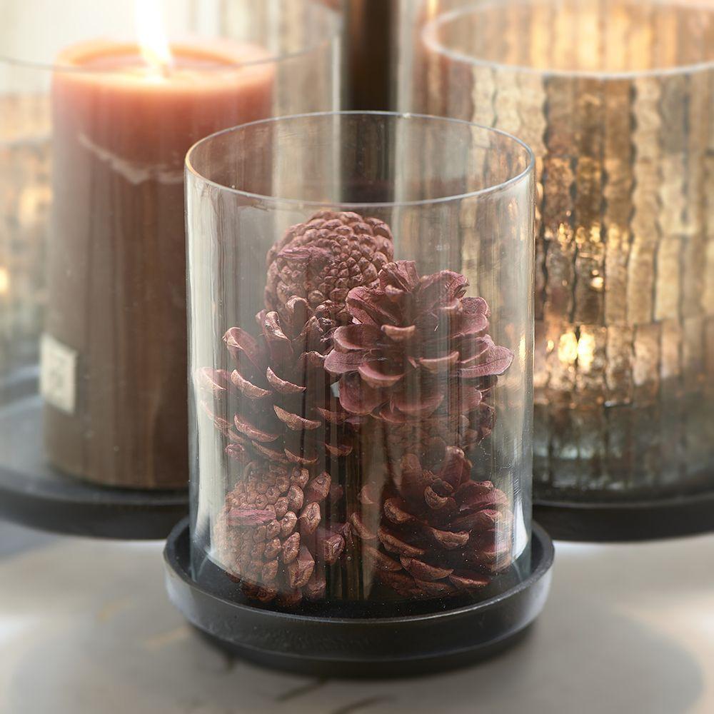 Celebrate Autumn Pinecones