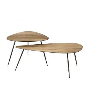 Twiggy Coffee Table S/2