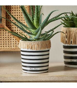 Summer Stripe Pot S