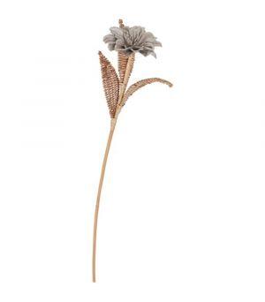 Květ MUST Living Rattan bloem